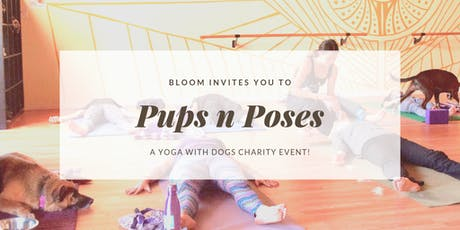 Pups n' Poses: Yoga with Dogs! tickets