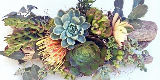 The Sill x WestWind Succulents: DIY Succulent Crown Workshop