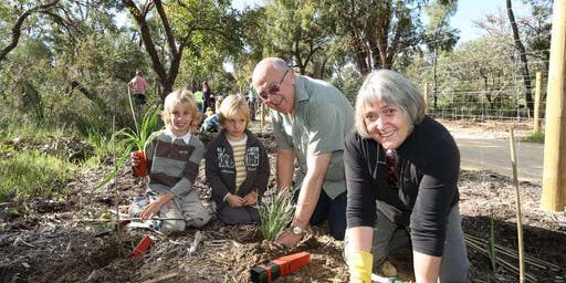 Lake Gwelup Community Plant Day