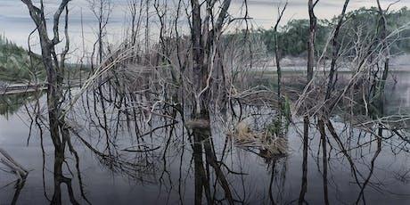 Nicholas Blowers Exhibition Opening | Pond Requiem tickets
