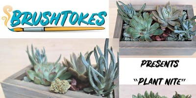 BrushTokes Plant Night - BUILD YOUR OWN SUCCULENT GARDEN & PLANT BOX - July 27, 2019