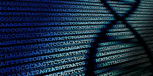Accelerating Discovery – Genomics England Research Environment