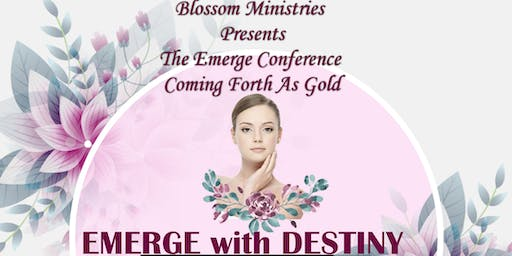 The Emerge Conference