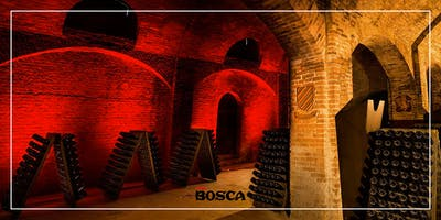 Tour in English - Bosca Underground Cathedral on 25th June 19 at 3:00 pm