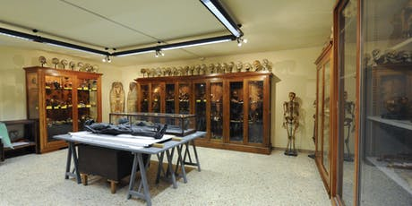 Visita Guidata al Museo di Anatomia Umana biglietti