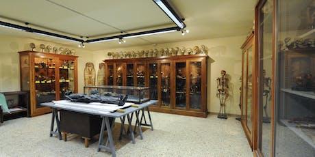 Visita Guidata al Museo di Anatomia Umana tickets