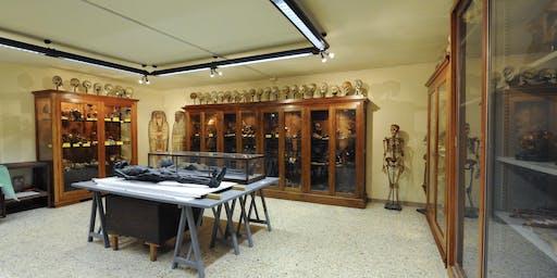 Visita Guidata al Museo di Anatomia Umana