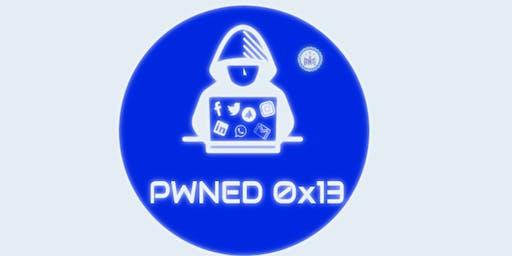 Pwned 0x13