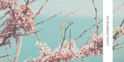 Emotionale Aromatherapie  - wie für mich alles anfing mit meinem Einsteigerset von Doterra