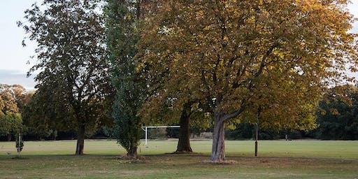Tooting Common Summer Tree Walk