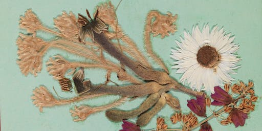 Beauty Abundant: Behind the Scenes Tour of Botanical Wonders from the State Library  Collections