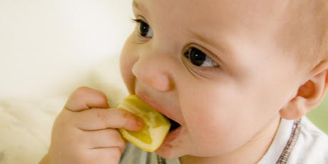 Introducing Solids - for parents starting to feed baby solid food DSCC 16/07/2019 tickets