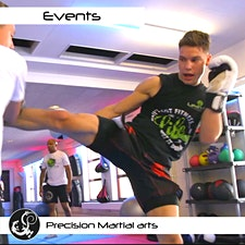 Precision Martial Arts, Camberley logo