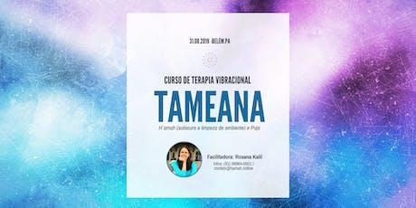 Formação em Terapia Vibracional Tameana (Autocura, Limpeza de Ambientes e Puja) com Rosana Kalil - Belém/PA ingressos