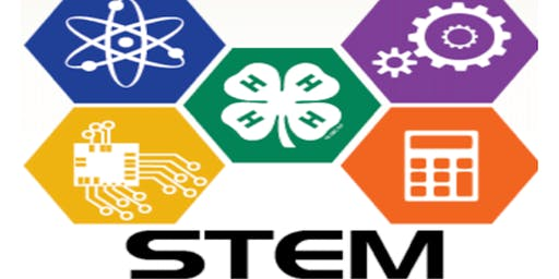 4-H STEM Day Camp (Science, Technology, Engineering, and Math)