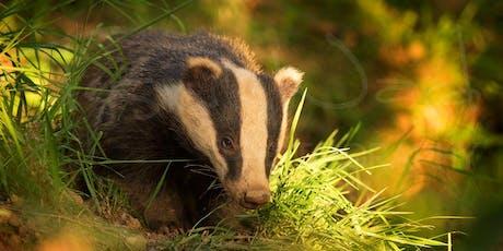 Wildlife Photography Evening Talk with Tesni Ward & Olympus UK tickets