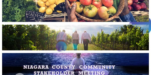 Niagara County Community Stakeholder Meeting