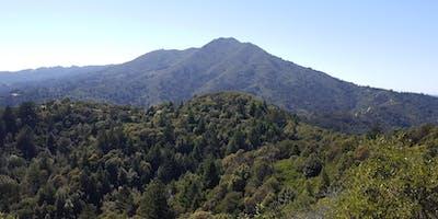 HCSF/HCSV Christmas Tree Hike, Marin County