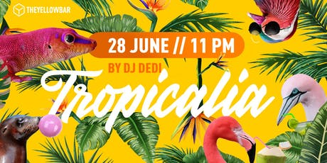 Tropicalia by DJ Dedi - The Yellow Bar biglietti