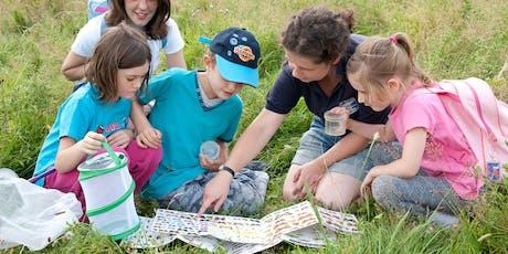 iSpy Wildlife Walk - Old Chalk New Downs tickets