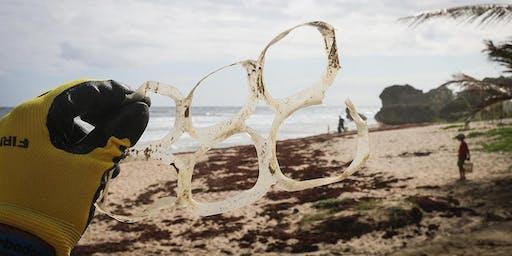 Beach Sweep (Clean Up)