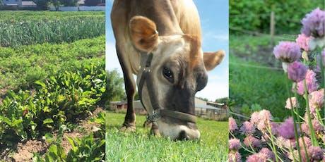 Farmers Market Tour: Feathers & Horns, Global Gardens, Dream Farm Flower tickets