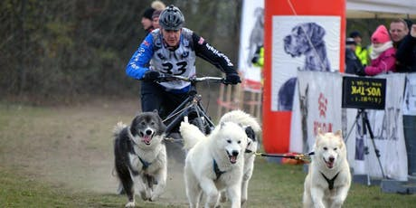 World Sleddog Association Dryland World Championships 2019 tickets