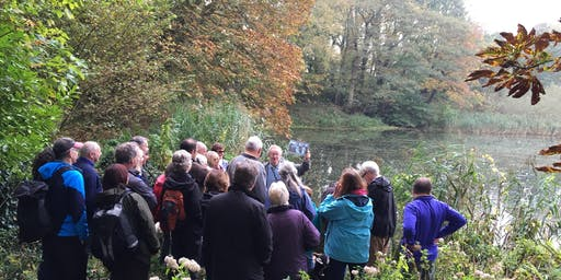Norfolk Walking Festival: Mindfulness Walks - Norwich