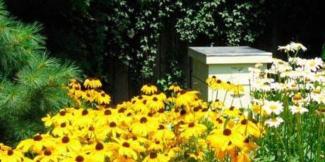 Treatment Free Bee Keeping