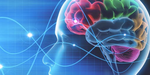 Traumatic Brain Injury: Effects and Strategies, Case Studies