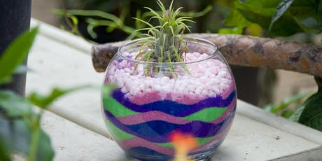 Get Your Craft On Thursday Tillandsia Plant and Sand Art Class tickets
