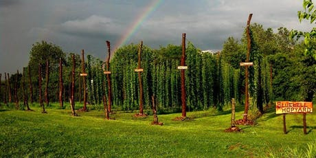 Bike Ride Brewery Tour + Post Ride Tasting Experience in the Hop Field 2019 tickets