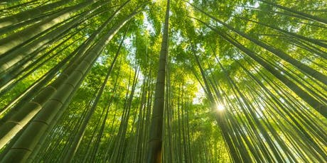 Bamboo Magic: Resilient & Sustainable with 1001 Uses tickets