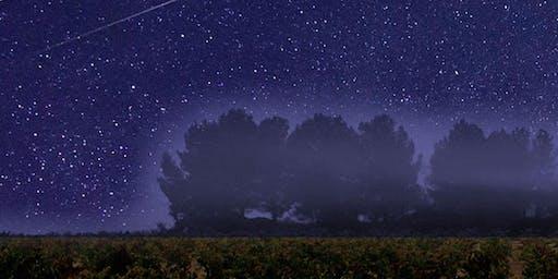 Cata y Estrellas en Dominio de la Vega