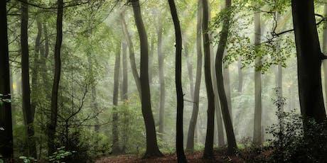 Wonderful Woods - Whitlawburn Pop Up Play tickets