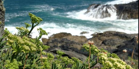 Coastal Wild Food Foraging Workshop tickets