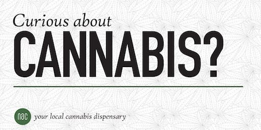 Curious About Medical Cannabis?