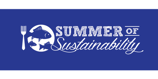 Summer of Sustainability