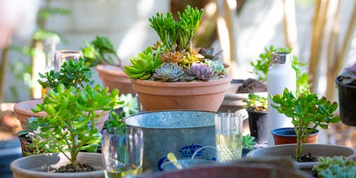 Flower Fest. Succulent Bowl Workshop