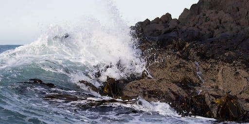 Te Kāhui Hōrapa Taiao - Conservation Communicators Aotearoa Hui