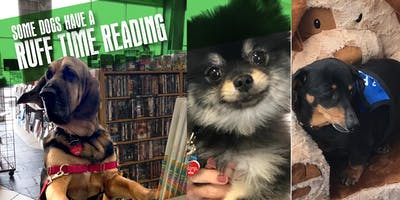 Bow-Wow Book Party II