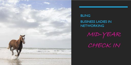 Business Ladies in Networking Group: July Meeting
