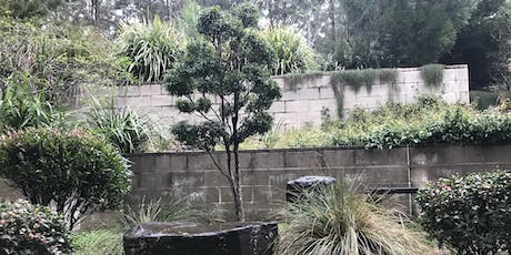 The Art of Bonsai with Native Plants tickets