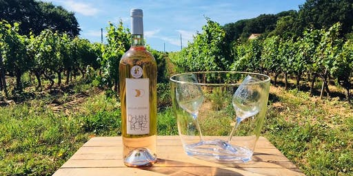 Je vois la vie en rosé – Afterwork Wein Tasting