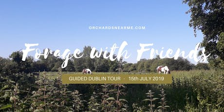 Foraging with Friends Wicklow Guided Tour tickets