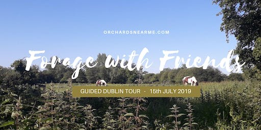 Foraging with Friends Wicklow Guided Tour