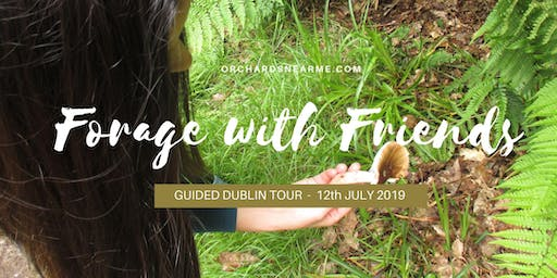 Guided Wild Food Tour & Talk