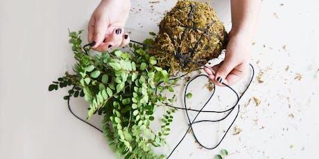 Atelier DIY - Création d'un kokedama billets