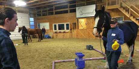 Trust & Respect - Equine Assisted Learning Session @Dreamwinds tickets