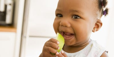 Introduction to Solid Foods - follow on, South Oxhey, 10:00 - 11:30, 08/11/2019